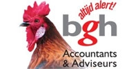 BGH Accountants